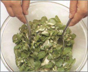 Салат из рапунцеля и свеклы